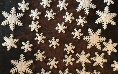 Lots of snowflakes drying.