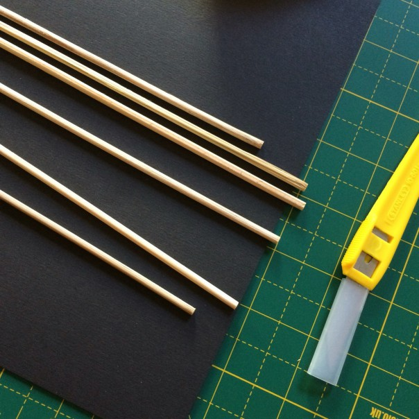 Wooden skewers (pointy ends snipped off).