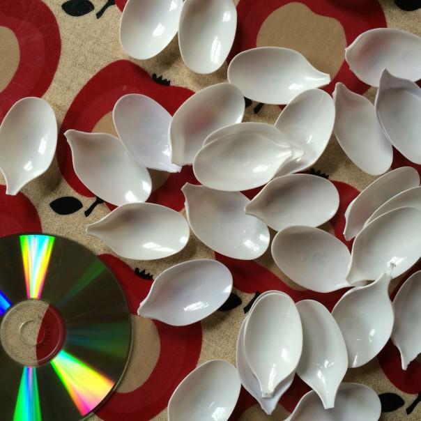 Spoon petals and a cd.